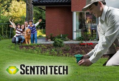 tratamiento termitas sentritech