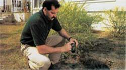 control termitas