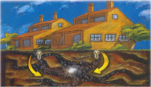 eliminacion colonia termita