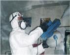 nebulización insectos