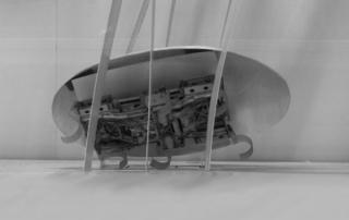 cucarachas robotica