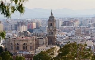 Málaga, ciudad referencia en la eliminación de ratas